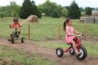 Two children riding tricycles down a path.